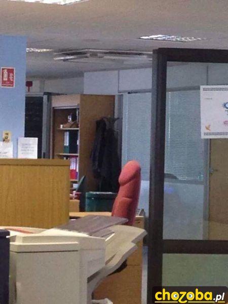 Karniak w biurze