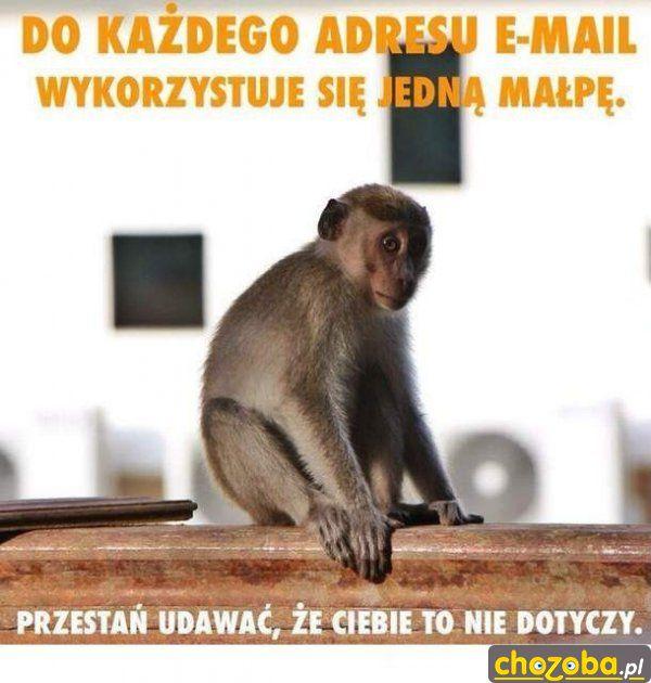 Uwolnić wszystkie małpy