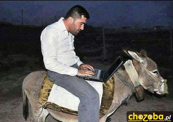 Osioł z komputerem pokładowym