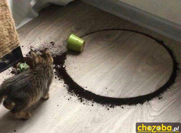 Kot rysuje okrąg