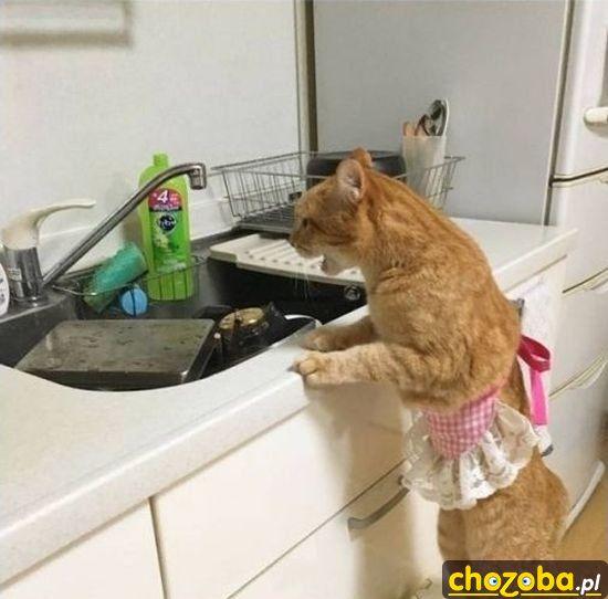 Tyle garów do mycia!