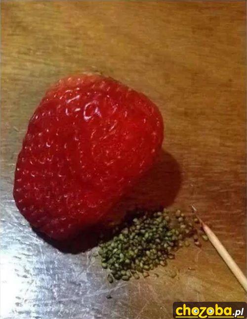 Obrana truskawka