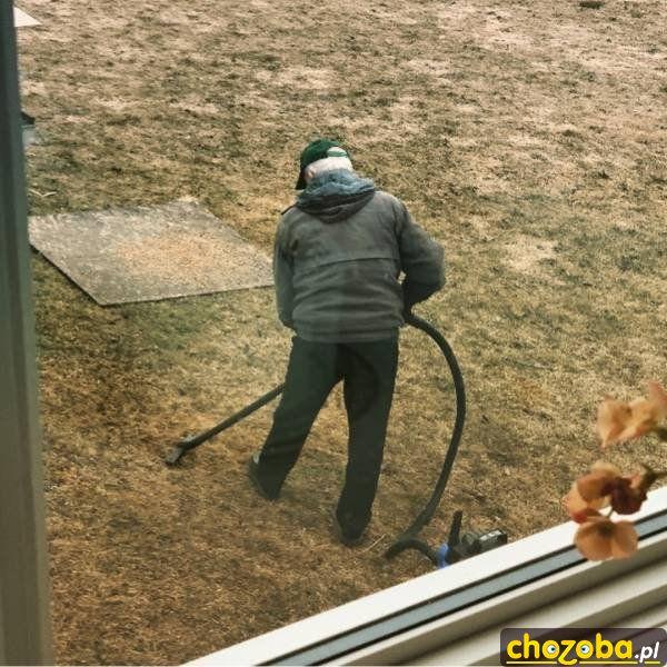 Trzeba odkurzyć trawnik