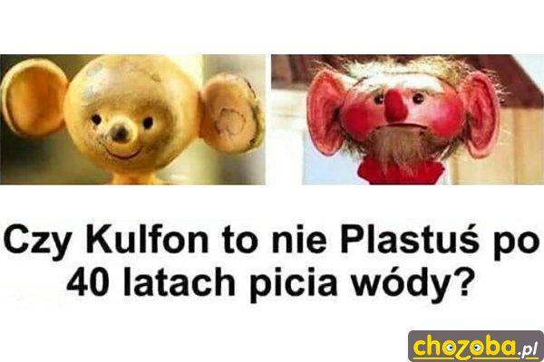 Kulfon to Plastuś