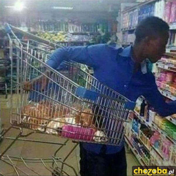 Murzyn na zakupach