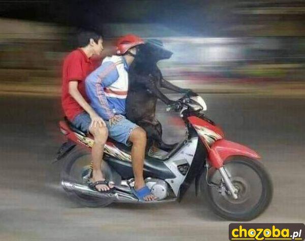 Na motorze